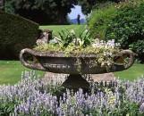 Urn Garden Collection (5 Plants)