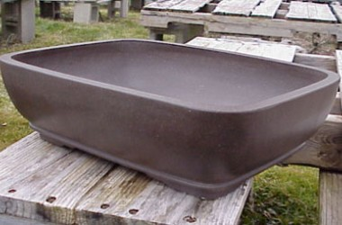 Lotus Bonsai Pot Matte Finish Large Rounded