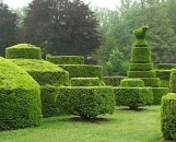 Standards & Topiary Collection