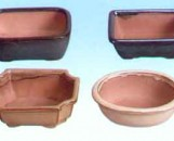 "Lotus 6"" Bonsai Pots"