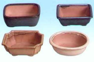 """Lotus 6"""" Bonsai Pots"""