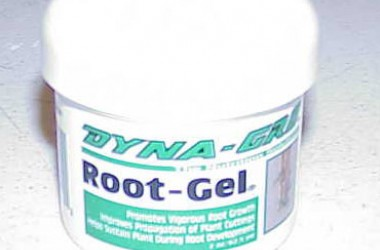 Rooting Hormone Gel